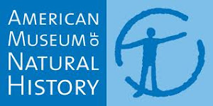 VISITA VIRTUAL AL NATIONAL MUSEUM OF NATURAL HISTORY ( NEW YORK )