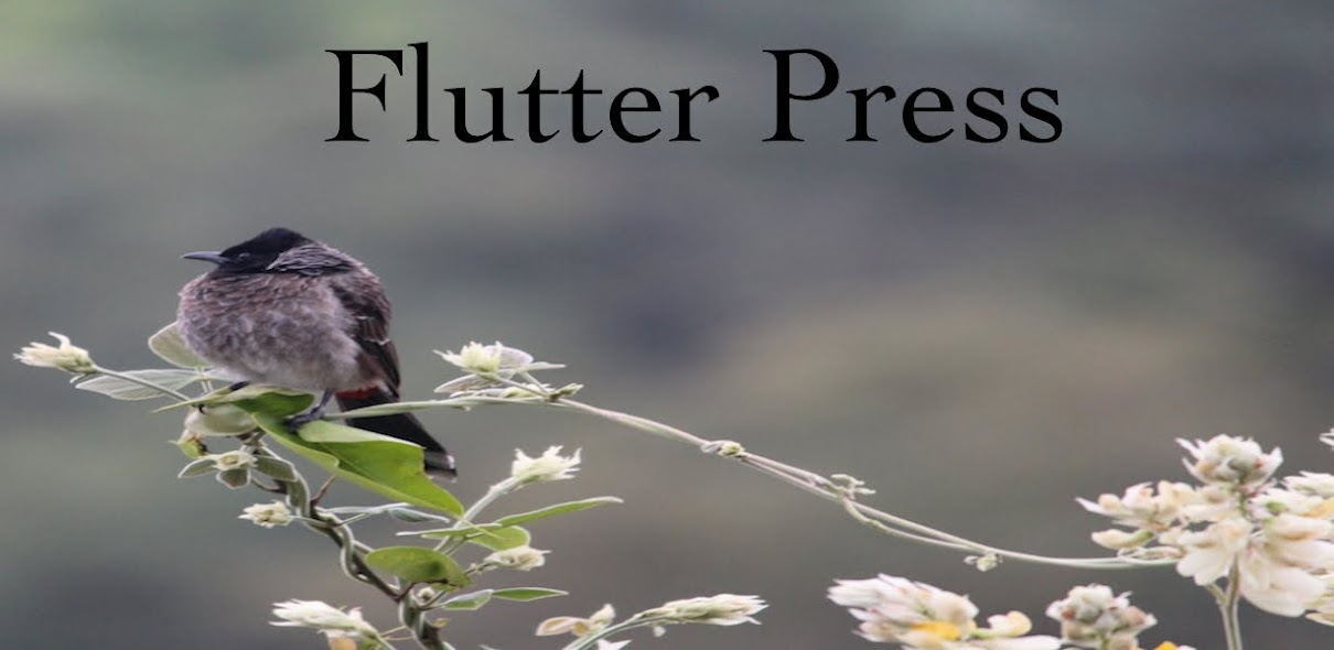 Flutter Press