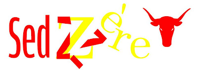 http://vuesurlespyrenees.blogspot.com/2013/06/fetes-de-sedzere-2013.html