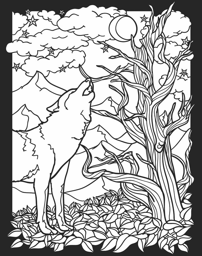nocturnal animals coloring pages - photo#2