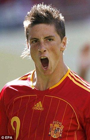 Top Football Players Fernando Torres Profile Fernando