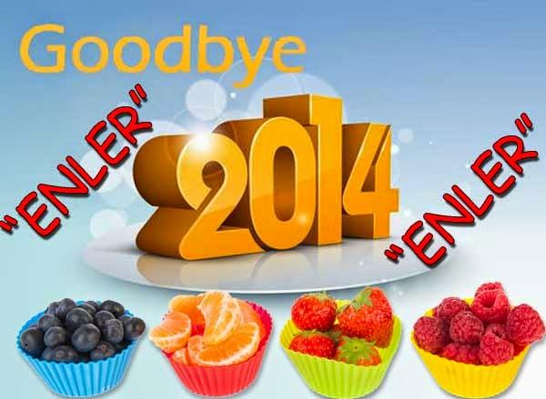 2015 diyetleri