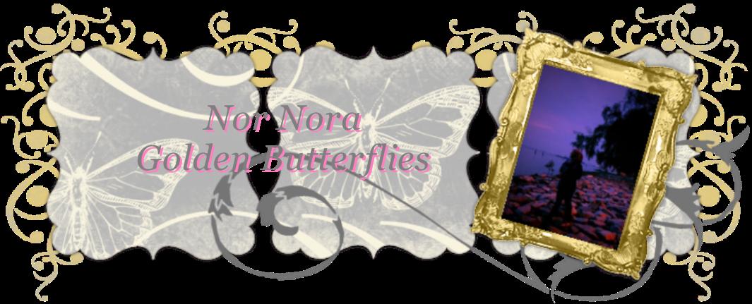 ~Nor Nora~