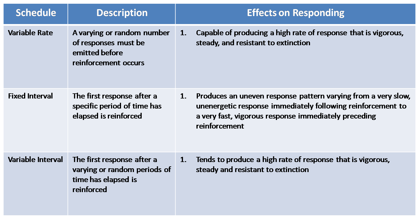 positive and negative reinforcers essay Positive vs negative reinforcement contrary to positive reinforcers, negative reinforcers aren't desired, and subjects are motivated to avoid them.