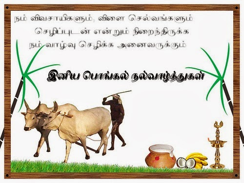 essay on pongal festival in tamil