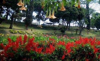 Tempat Tujuan Wisata di Malang