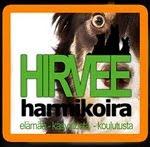 Hirvee Harmikoira