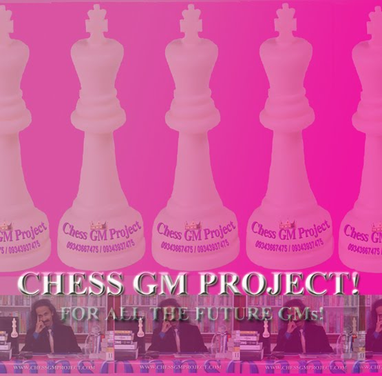 Chess GM Project!