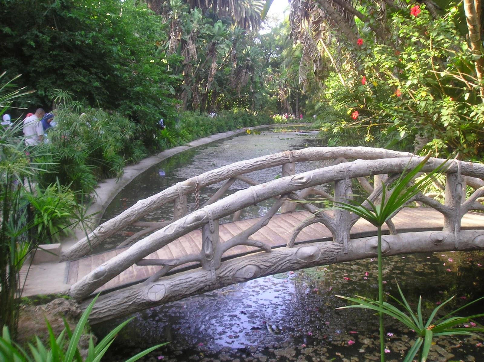 Travel to algeria jardin d 39 essai du hamma for Jardin d essai alger