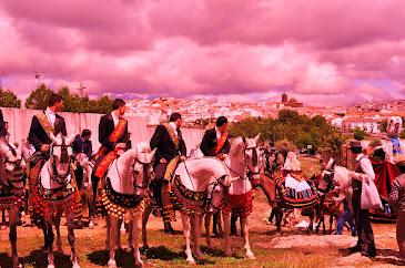 Romería de San Benito Abad 2012