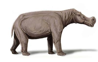 dinocerata Gobiatherium