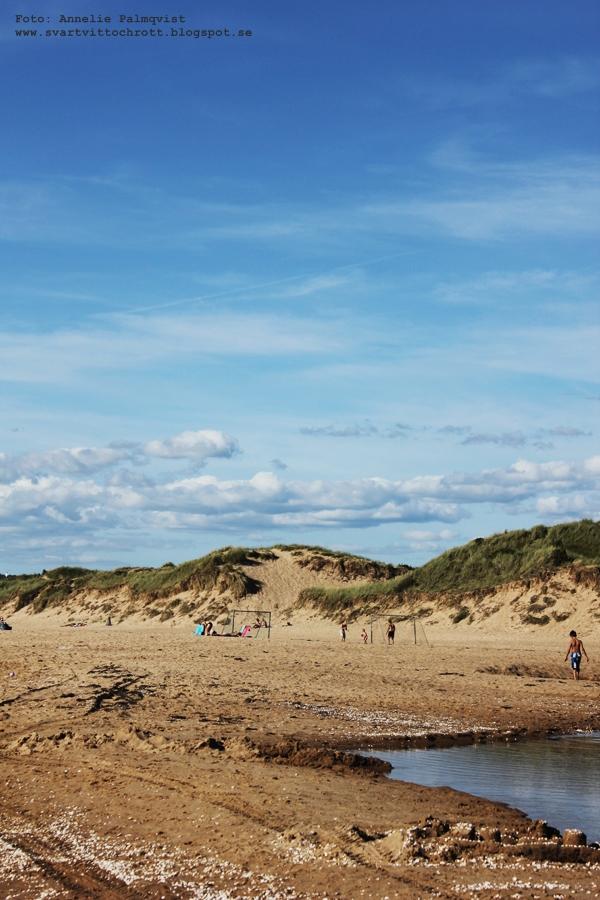 halmstad, strand tylesand, kock off tylebäck, stranden, strandhus,