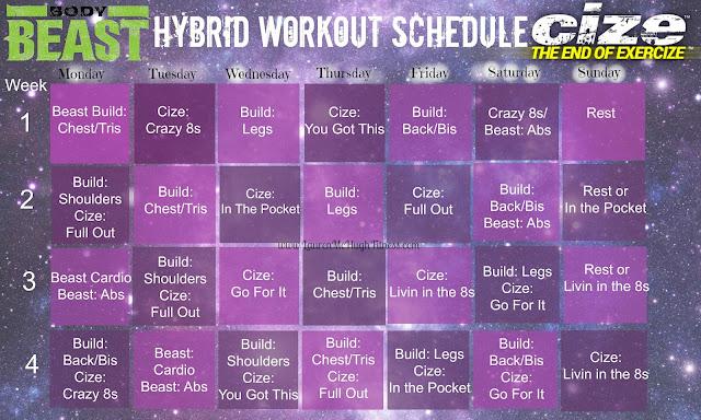 Cize Hybrid Schedule