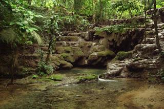 palenque méxico,Palenque
