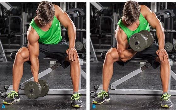 Como hipertrofiar bíceps e tríceps