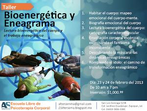 Taller Bioenergética y Eneagrama