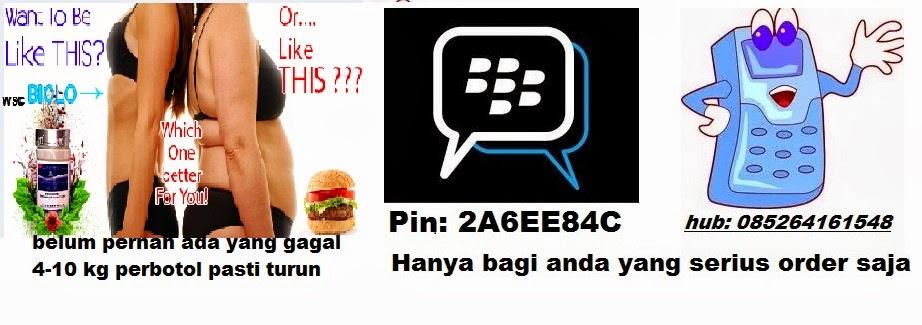 Hub kami ( 085264161548 dan pin BB: 2A6EE84C )
