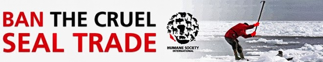 Diga não ao cruel comércio da morte.
