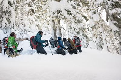 Crest Mountain Trail