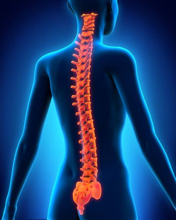 Si puede a la osteocondrosis la náusea