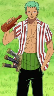zoro before timeskip