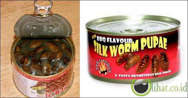 Canned Silkworm Pupae