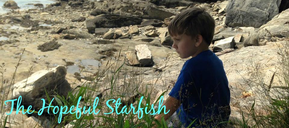 The Hopeful Starfish