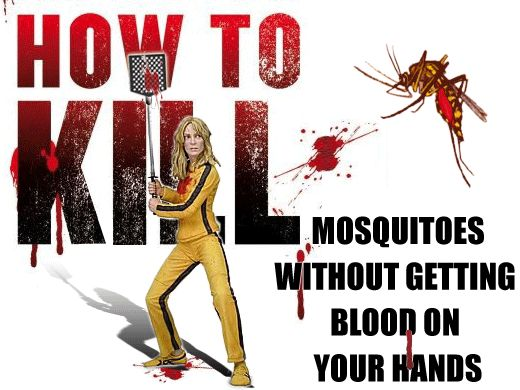 Attract & Kill Mosquitoes