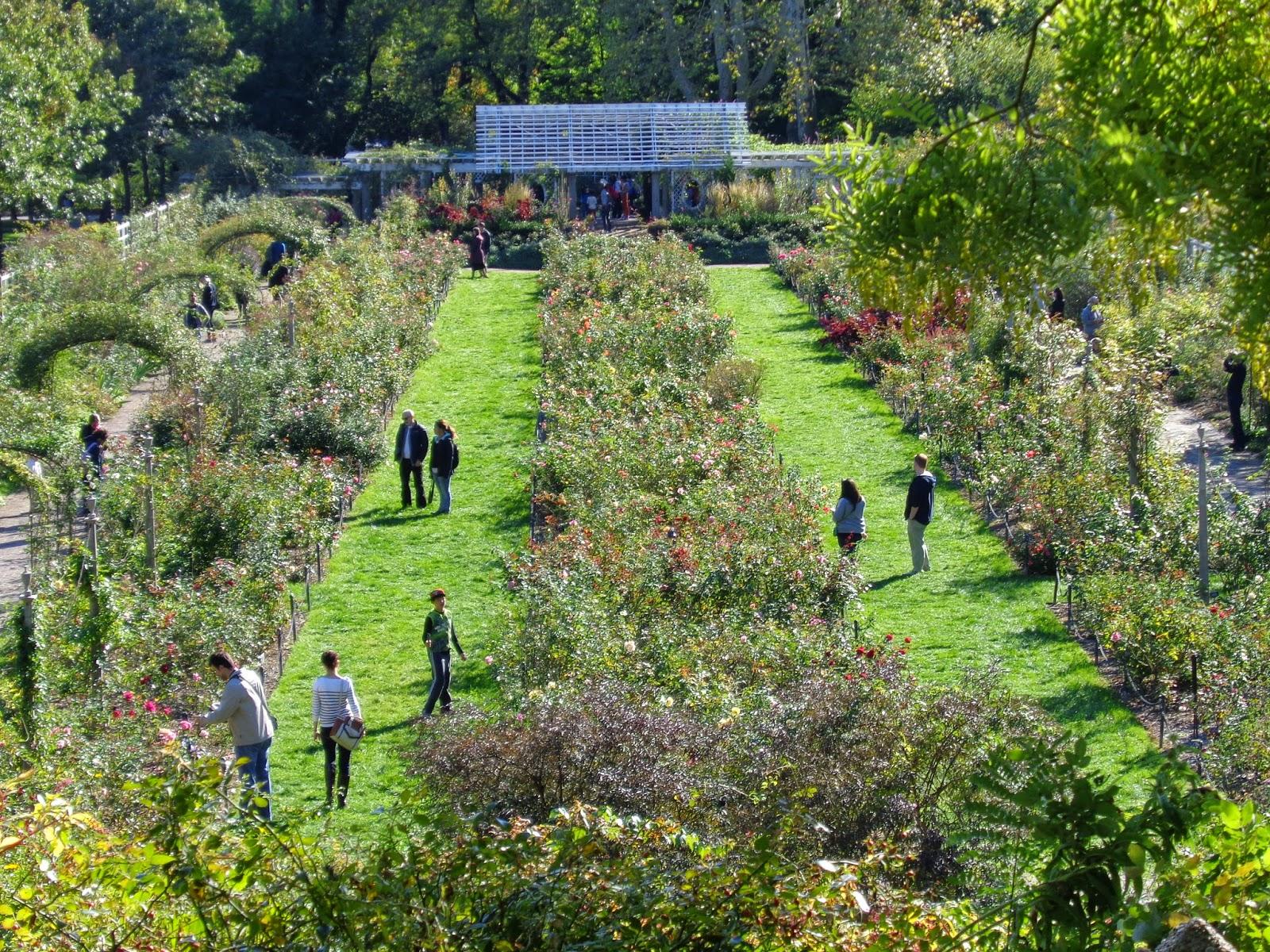 American Dream Finder Day Trip Diary Brooklyn Botanical Garden