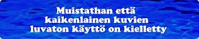 © Janne Kyrönlahti