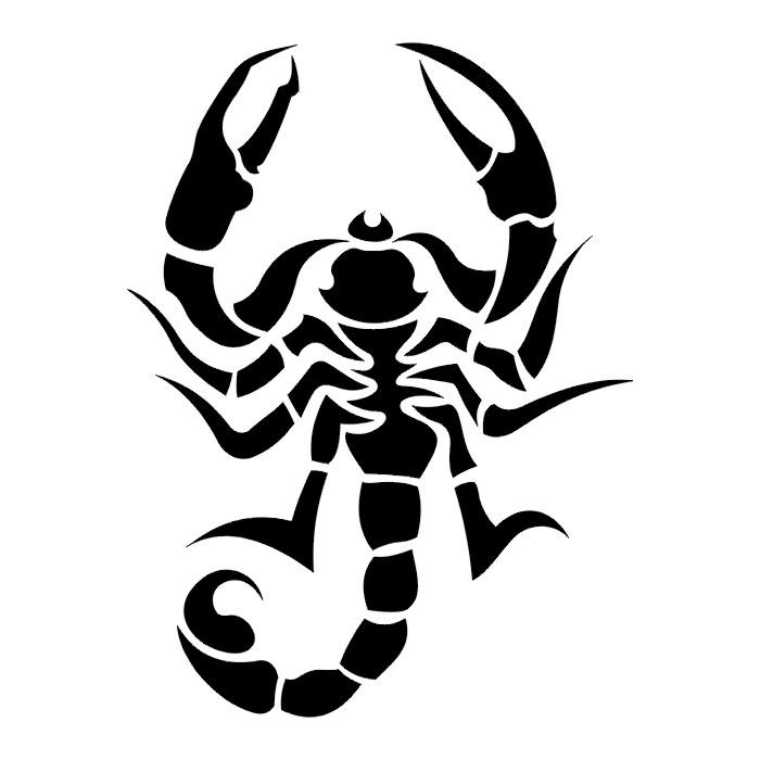 Scorpion IV Tatto Black amp White Tribal