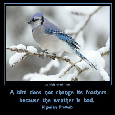 Nigerian proverb: A bird does not change its feathers because the weather is bad.