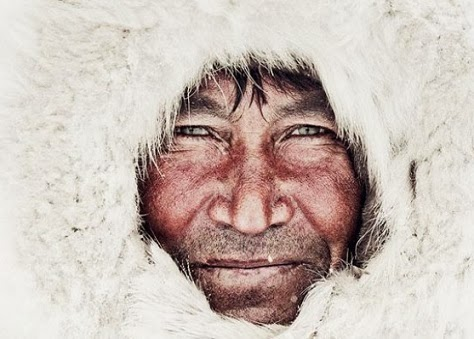 46 rostro tribu