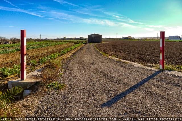 Parc agrari del Delta del Llobregat