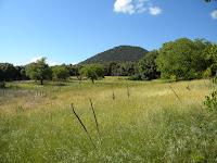 Monte Minardo