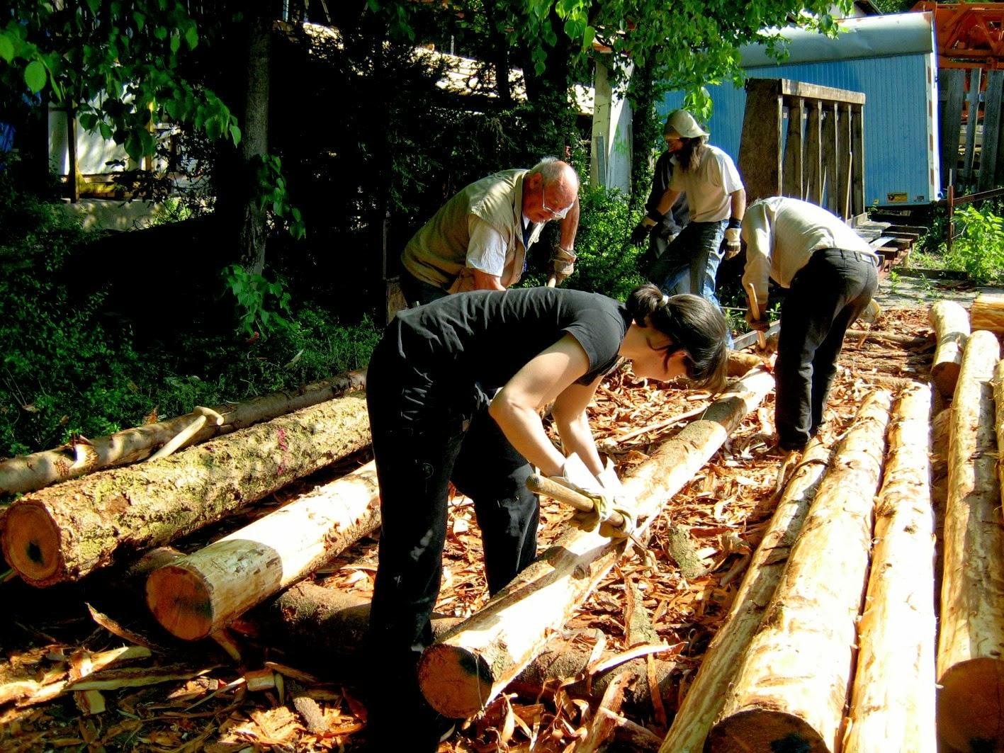 Schauenburger beim Schälen des Stammholzes