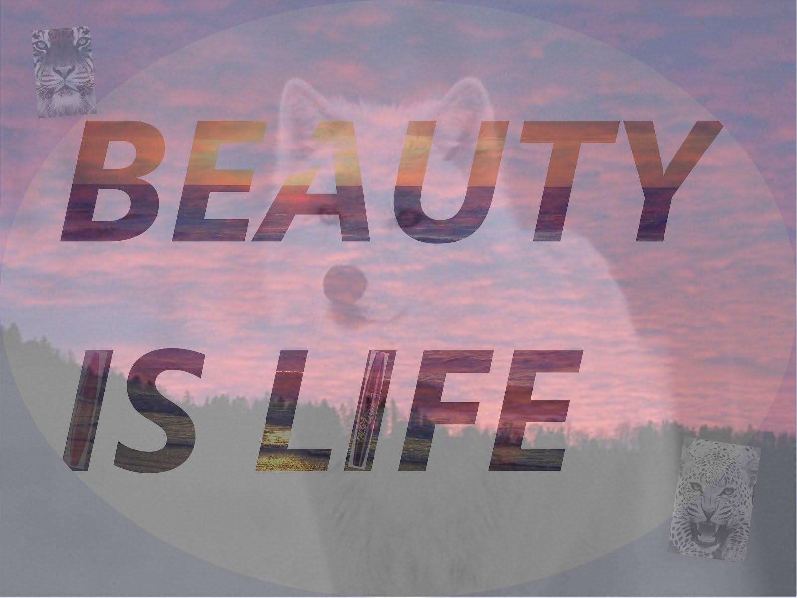 Beauty's Life.