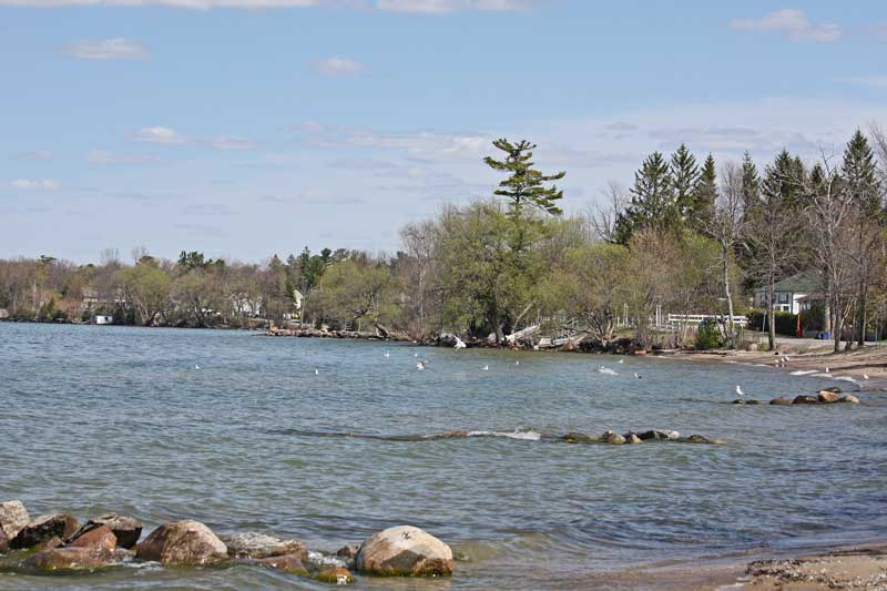 Simcoe (ON) Canada  City new picture : East Gwillimbury CameraGirl: Lake Simcoe/ Watery Wednesday