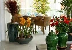 PLANTAS E FLORES NATURAIS