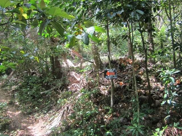 makulot new trail, mt maculot new trail, new trail mt makulot, new trail mt maculot, mt maculot itinerary, mt makulot new itinerary