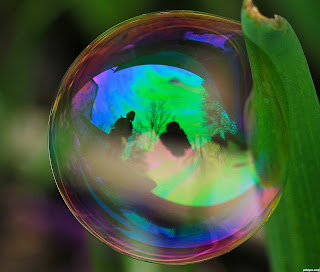 Reflection bubble on a leaf