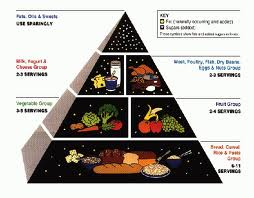 Ditching the Food Pyramid