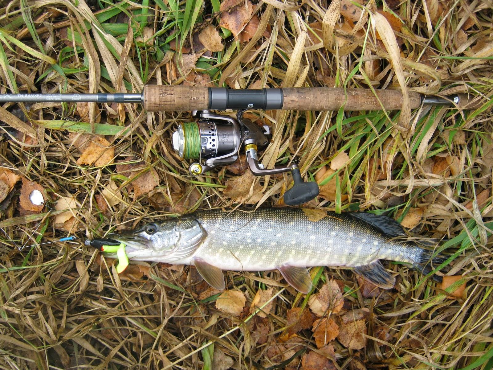 посмотреть видео рыбалка на щуку