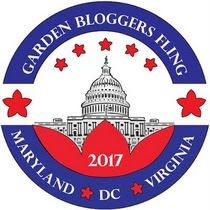 DC Fling 2017