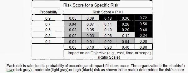 project risk management journal pdf