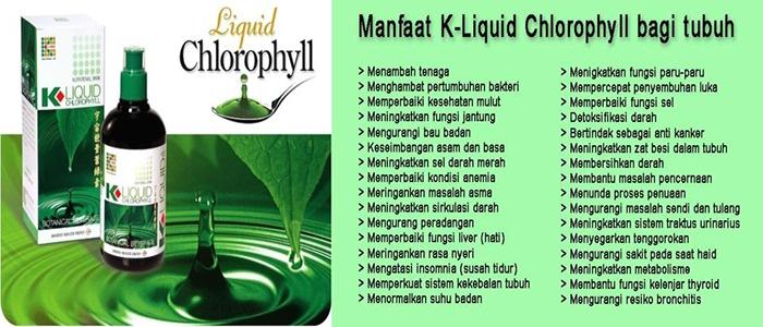 Manfaat Produk Klorofil