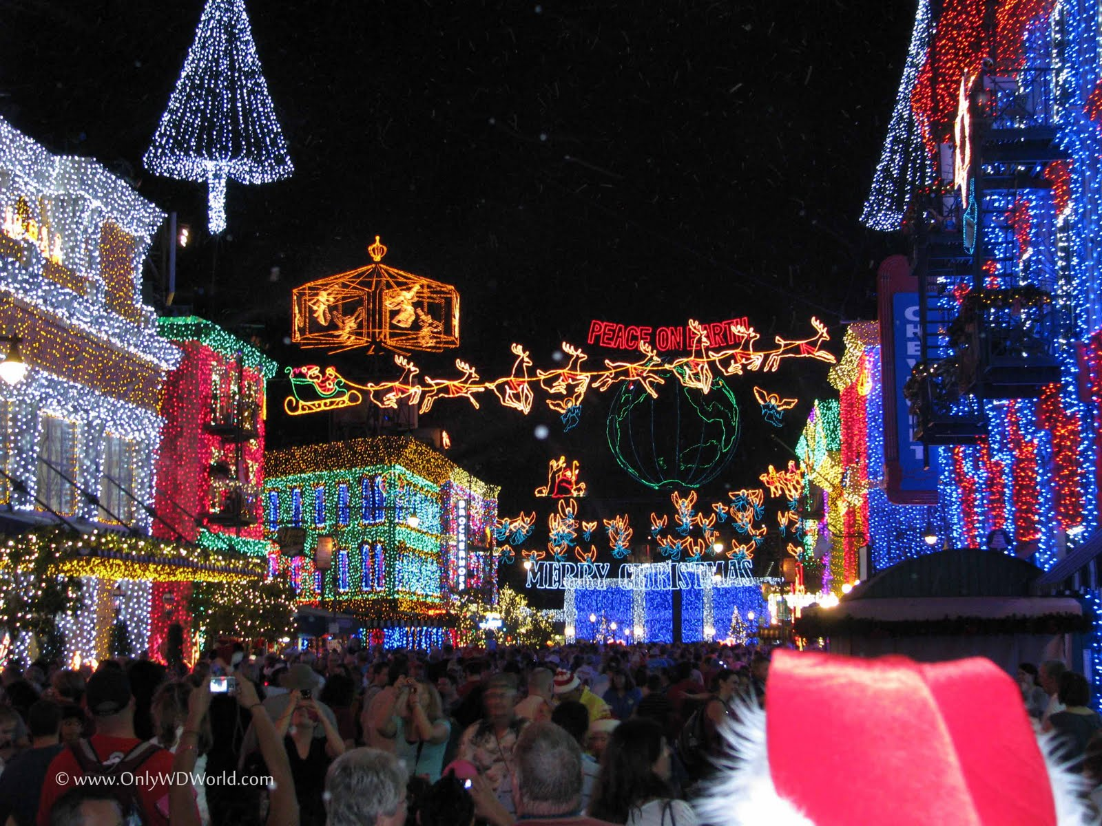 Disney World Special Events  Your Disney Travel