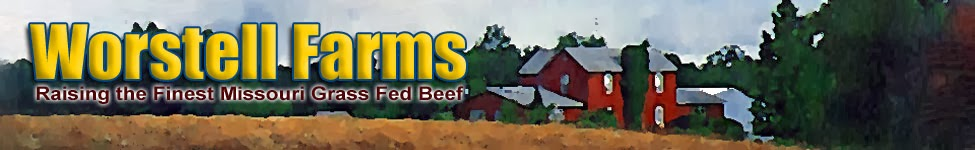 Preparedness for Life: Starts With Missouri Grass Fed Beef - Good for you!