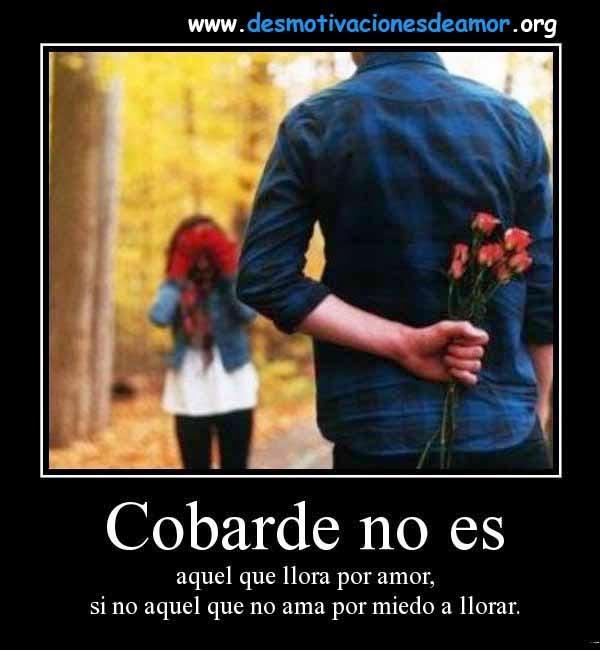 Cobarde no es aquel que llora por amor, si no aquel que no ama por