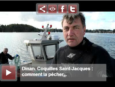 1 octobre 2013 top d part de la coquille saint jacques - Comment cuisiner les coquilles saint jacques ...